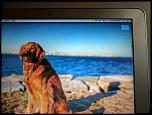 "Macbook Air 11"" 4 GB ram, 128 GB SSD, new LCD, new battery, dual boot of OS X & Win 8-img_20170212_080514-jpg"