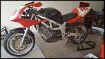 2001 SV650 Race Bike-bike1-jpg