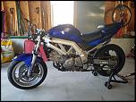 2004 SV650 (standard model) track bike-3-jpg