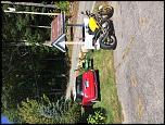 Little Wife Bike Choices-home-jpg